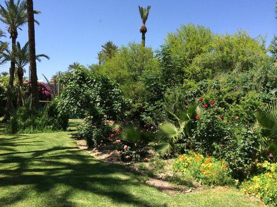 Hotel Marrakech le Semiramis: Gardens