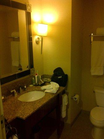 Loews New Orleans Hotel : Vanity