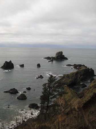 Ecola State Park: West view