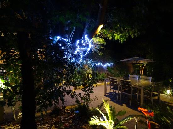 Edge of the Forest: Back garden
