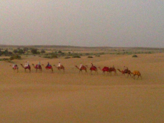 Rao Bikaji Camel Safari - Day Tours