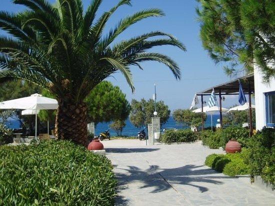 Akti Kastraki Areti: Only 7 meters from the beach