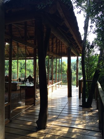 Trogon House and Forest Spa: Main Lodge