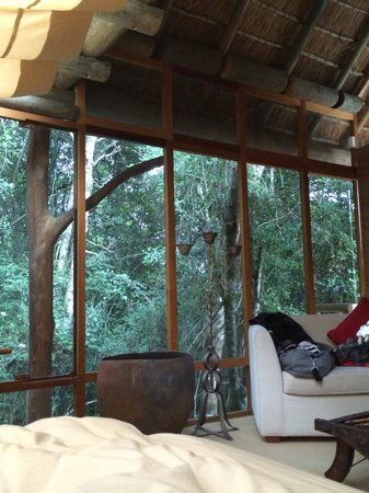 Trogon House and Forest Spa : View into the forest from Bed