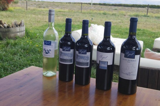 Trout & Wine Tours: Sample of wines from La Azul
