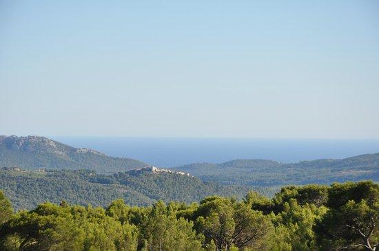 Hotel & Spa du Castellet : Vue depuis le parc