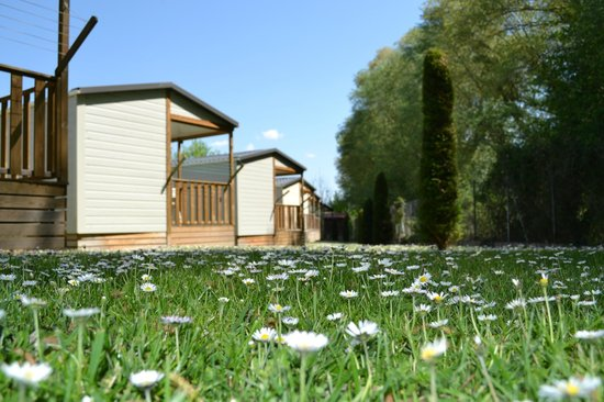 Camping de Haro : Bungalows