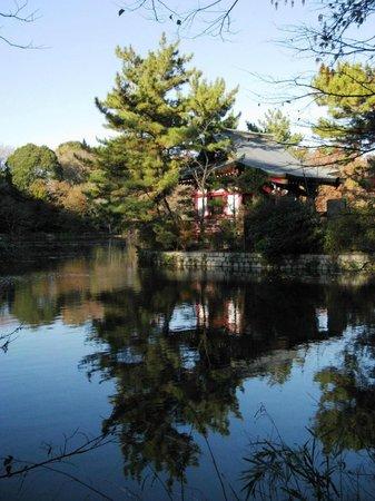 Shakujii Park : Островок Ицукусима