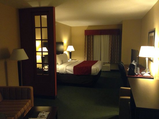 Comfort Suites Orlando Airport : View of room