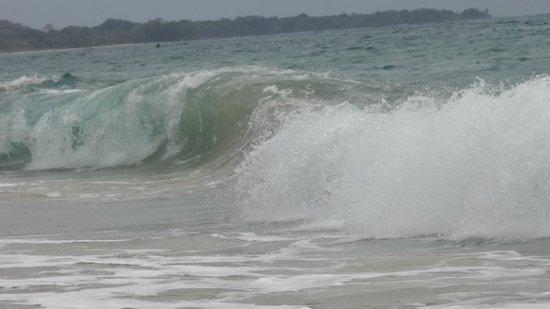 Playa Bluff: Olas