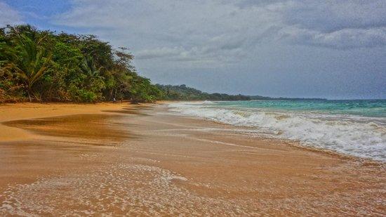 Playa Bluff: Playa