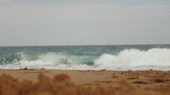 Playa Bluff: Olas feroces