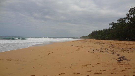 Playa Bluff: Playas desiertas