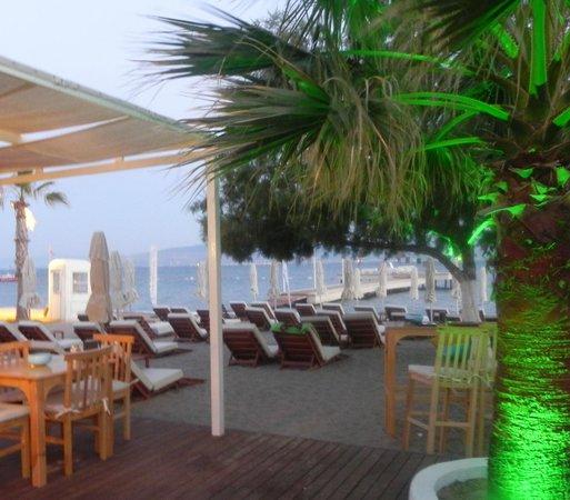 Tuna Beach : Plaj