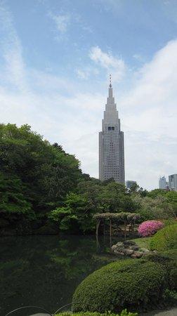Shinjuku Gyoen National Garden: City View