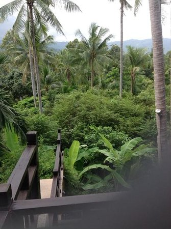 Kirikayan Luxury Pool Villas & Spa: view from poolside lounge area