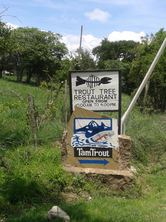 Trout Tree: Welcome sign