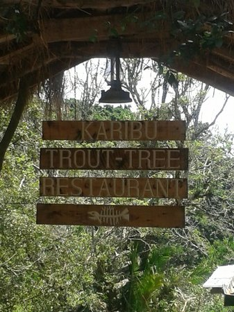 Trout Tree: Karibu sign