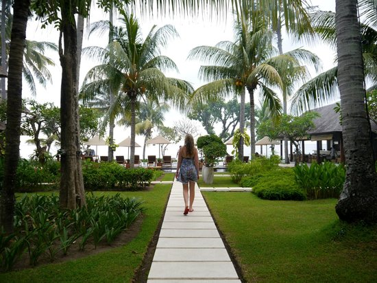 Qunci Villas Hotel: The path to the pool.
