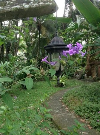 Hotel La Costa de Papito : Lanterns come on automatically at night to lite your pathway.