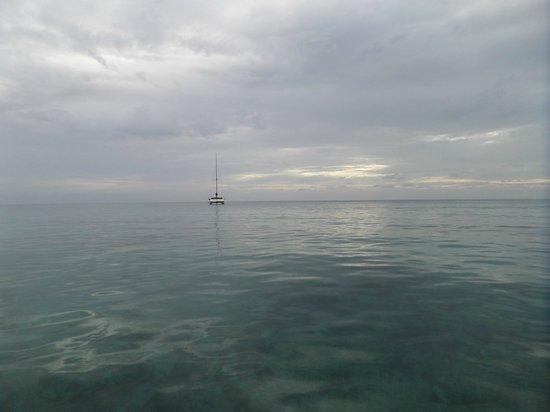Ningaloo Reef: Pearl