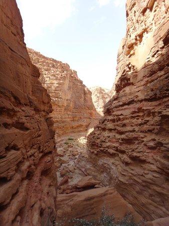 Sinai Safari - Day Tours: Very cool canyons