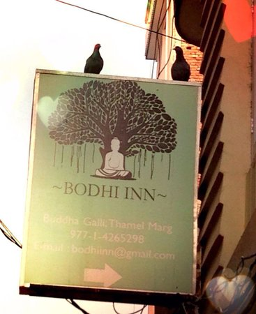 Bodhi Inn: Nature is closer here.