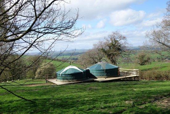 Strawberry Skys Yurts: Oak Yurt
