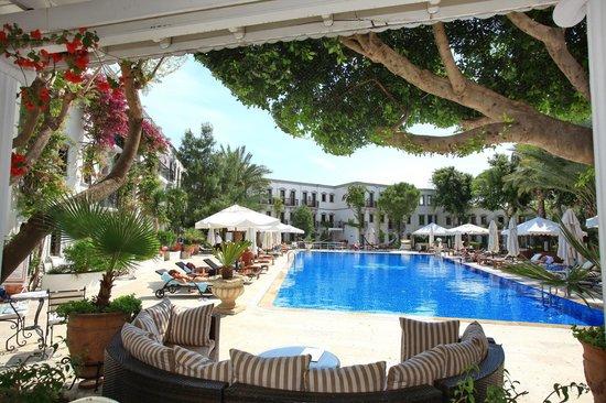 Marina Vista Bodrum: Pool