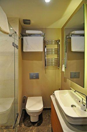 Brick Palas : Bath