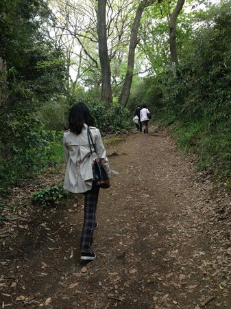 Kamakura Hiking Trails : ハイキングコース