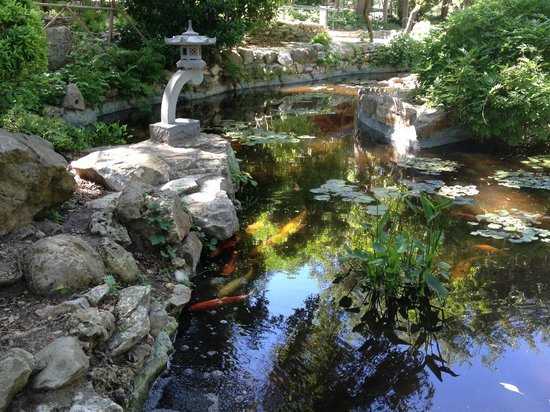 Zilker Botanical Garden: Beautiful