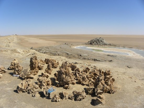 Chott El Jerid: Rose del deserto