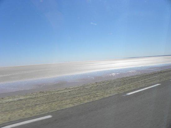 Chott El Jerid: Cristalli di sale che brillano al sole