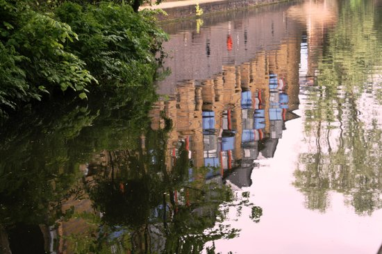 Regent's Canal : Reflection