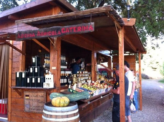 Camping Valle Gaia: Fruit, veg and great wine at the top of the road