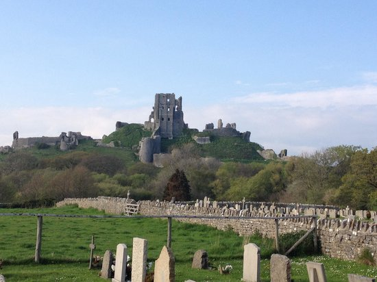 Olivers : View of Corfe castle from the car park area