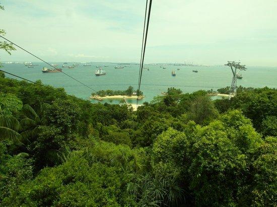 Mega Adventure Park: view