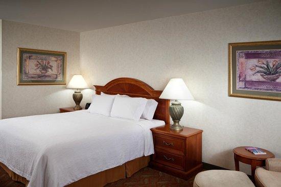Hilton Garden Inn Tri-Cities/Kennewick: King Guest Room