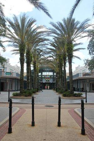 Disney's Port Orleans Resort - French Quarter : Avenue to Reception