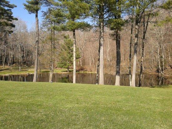 The Mayflower Grace: The pond