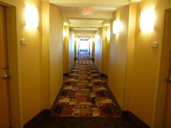 Comfort Suites Gulfport: Bright clean hallways