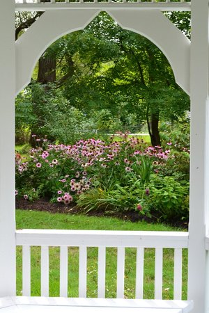 The Federal House B & B : Our cottage garden in summer