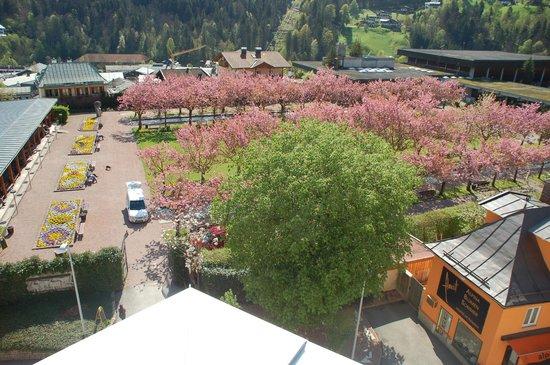 Hotel Edelweiss: Kurgarten von der Dachterrasse
