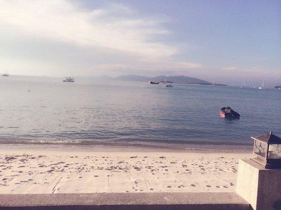 Ocean 11 : sunaet