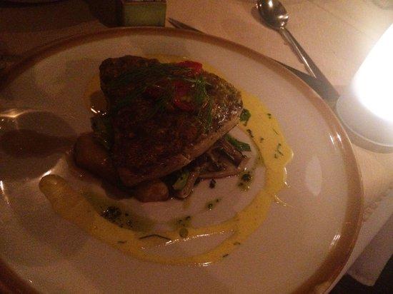Ocean 11 : Tuna steak