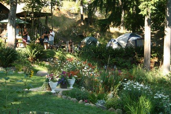 Sun Lotus Yoga Sanctuary : tenting &grounds