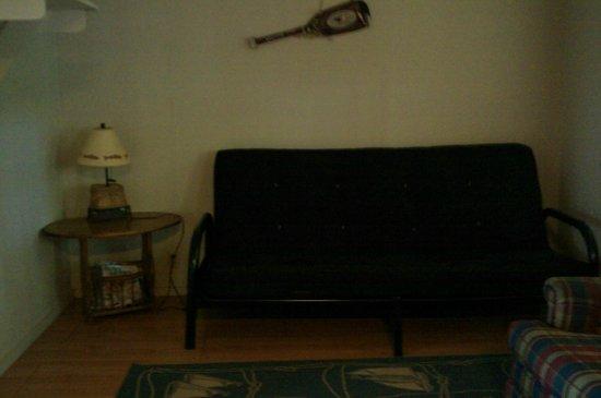 Echo Canyon Resort & Marina : 1 bedroom cabin living room with futon sofa