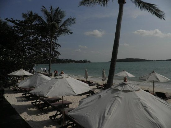 Iyara Beach Hotel & Plaza: Vue de la terrasse du bungalow
