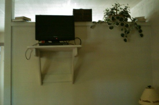 Echo Canyon Resort & Marina: 1 bedroom cabin living room tv and wall divider